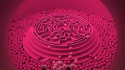3d animation pink maze