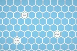 Healthcare Animation honeycomb screenshot