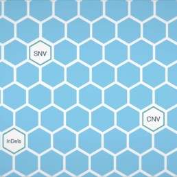 Healthcare Animation honeycomb screenshot