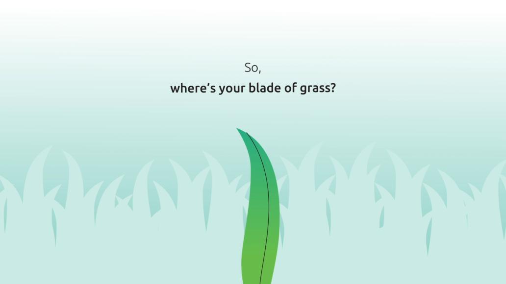 video pack screenshot grass