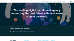 Salt Recruitment website animation